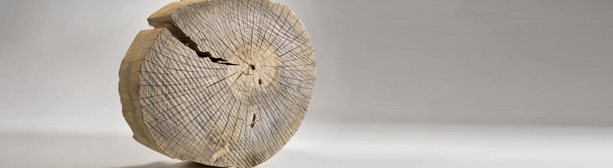 Bei uns dreht sich alles um's Holz
